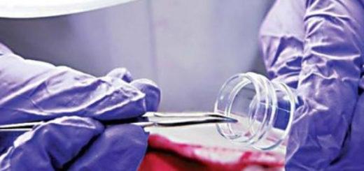 Виды судебно-медицинских экспертиз